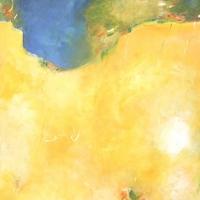 buehler-sanvja-himmelsblumen