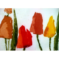 fussmann-klaus-tulpen