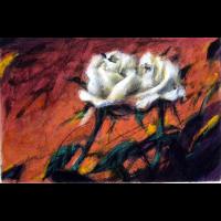 wever-peter-rosenrot